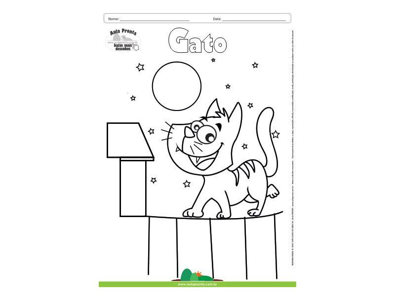 Desenho para Colorir – Animais - Gato