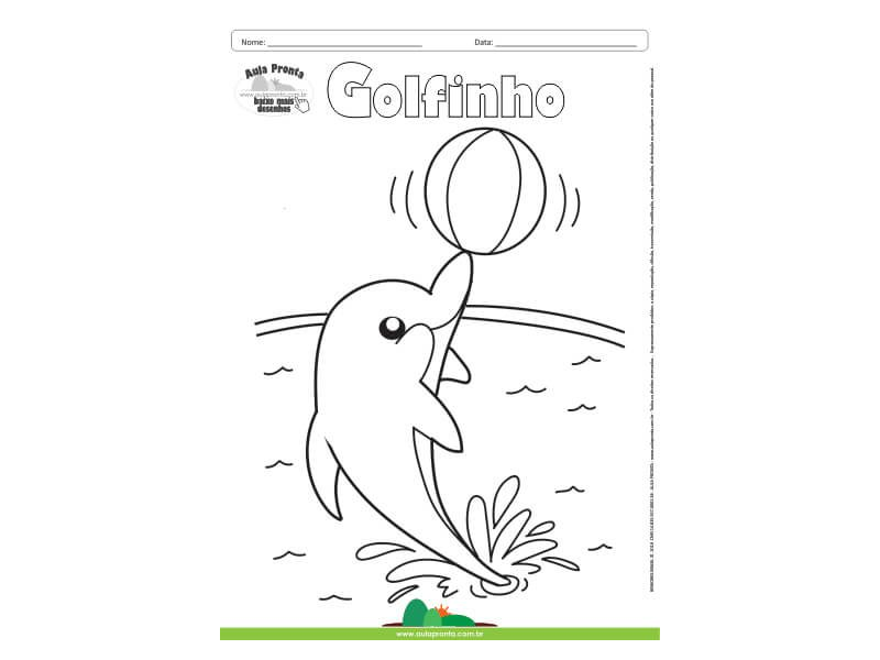 Desenho para Colorir – Animais - Golfinho
