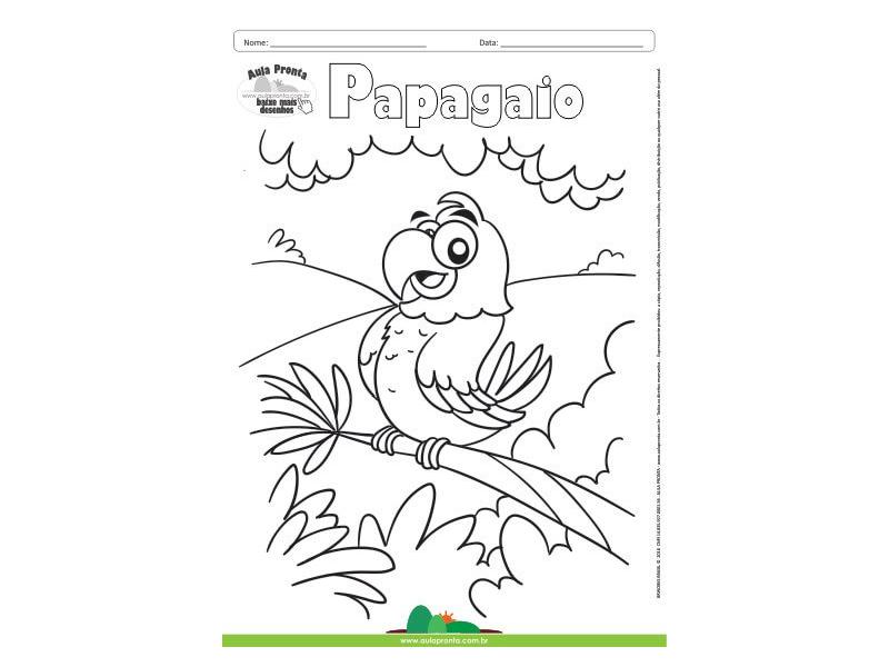 Desenho para Colorir – Animais - Papagaio
