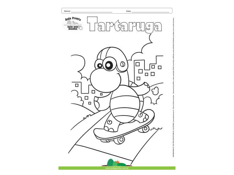 Desenho Para Colorir Animais Tartaruga Aula Pronta