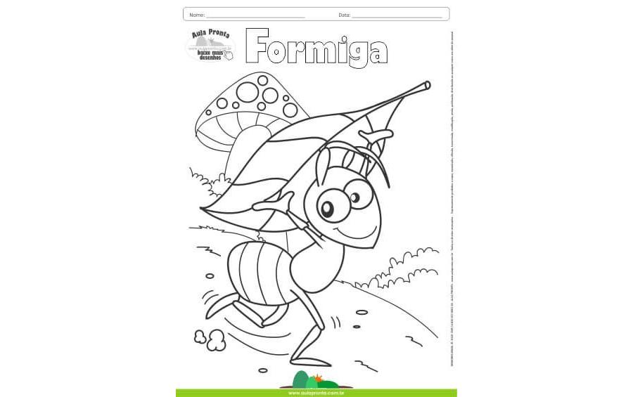 Desenhos para Colorir - Formiga