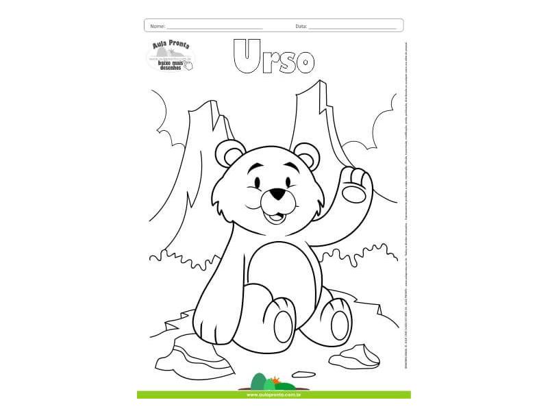 Desenhos Para Colorir Urso Aula Pronta